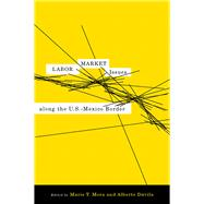 Labor Market Issues Along the U.S.-Mexico Border by Mora, Marie T.; Davila, Alberto, 9780816527007