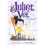 The Big Flood by Johnson, Rebecca; May, Kyla, 9780143507031
