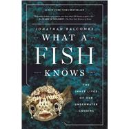 What a Fish Knows by Balcombe, Jonathan, 9780374537098