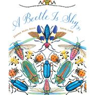 A Beetle Is Shy by Aston, Dianna Hutts; Long, Sylvia, 9781452127125