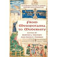 From Mesopotamia To Modernity: Ten Introductions To Jewish History And Literature by Visotzky,Burton, 9780813367170