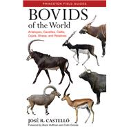 Bovids of the World by Castelló, José R.; Huffman, Brent; Groves, Colin, 9780691167176