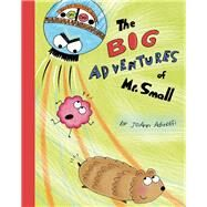 The Big Adventures of Mr. Small by Adinolfi, JoAnn, 9781939547262