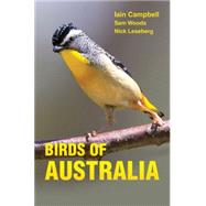 Birds of Australia: A Photographic Guide by Campbell, Iain; Woods, Sam; Leseberg, Nick; Jones, Geoff, 9780691157276