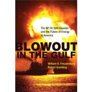 Blowout in the Gulf by Freudenburg, William R.; Gramling, Robert, 9780262517294