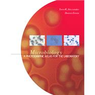 Microbiology A Photographic Atlas for the Laboratory by Alexander, Steven K., Ph.D.; Strete, Dennis, 9780805327328