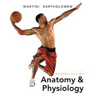 Essentials of Anatomy & Physiology by Martini, Frederic H.; Bartholomew, Edwin F., 9780321787453