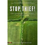 Stop, Thief!: The Commons, Enclosures, and Resistance by Linebaugh, Peter, 9781604867473