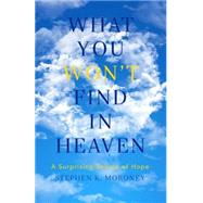 What You Won't Find in Heaven by Moroney, Stephen K., 9781941337486