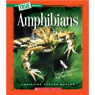 Amphibians by Taylor-Butler, Christine, 9780531217504