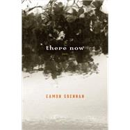 There Now Poems by Grennan, Eamon, 9781555977542