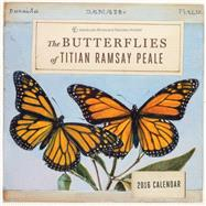 Butterflies of Titan Ramsay Peale 2016 Wall Calendar by Peale, Titian; American Museum of Natural History, 9781419717543