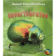 Invertebrates by Royston, Angela, 9781484607596