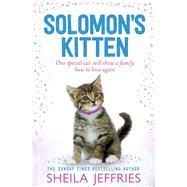 Solomon's Kitten by Jeffries, Sheila, 9781471137600