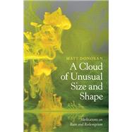 A Cloud of Unusual Size and Shape Meditations on Ruin and Redemption by Donovan, Matt, 9781595347602