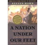 A Nation Under Our Feet by Hahn, Steven, 9780674017658
