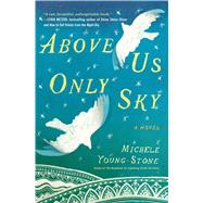Above Us Only Sky by Young-Stone, Michele, 9781451657685