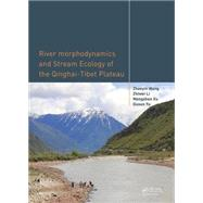 River Morphodynamics and Stream Ecology of the Qinghai-Tibet Plateau by Wang; Zhaoyin, 9781138027718