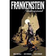Frankenstein Underground by Mignola, Mike (CRT); Stenbeck, Ben; Stewart, Dave; Robins, Clem, 9781616557829
