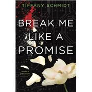 Break Me Like a Promise Once Upon a Crime Family by Schmidt, Tiffany, 9780802737830