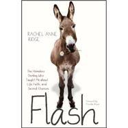 Flash by Ridge, Rachel Anne; Shirer, Priscilla, 9781414397832