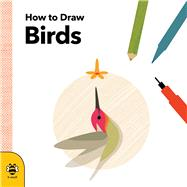 How to Draw Birds by Betts, Anna, 9781909767850