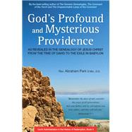 God's Profound and Mysterious Providence by Park, Abraham, 9780804847926