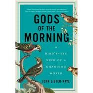 Gods of the Morning: A Bird's-eye View of a Changing World by Lister-Kaye, John, 9781605987965