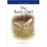The Barn Owl by Warburton, Tony, 9781408137970