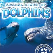 Social Lives of Dolphins by Laneve, Sue, 9781681918013