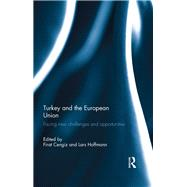 Turkey and the European Union: Facing New Challenges and Opportunities by Cengiz; Firat, 9780415828024