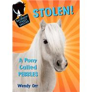 STOLEN! A Pony Called Pebbles by Orr, Wendy; Castelao, Patricia, 9781250068033