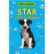 Star on Stormy Mountain by Lewis, Gill; Horne, Sarah, 9781627798037