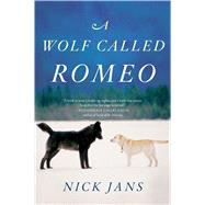 A Wolf Called Romeo by Jans, Nick, 9780544228092