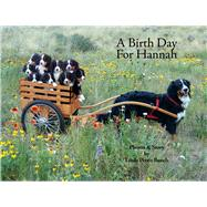 A Birth Day for Hannah by Bunch, Linda Petrie, 9780977778126