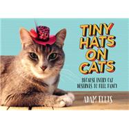 Tiny Hats on Cats by Ellis, Adam, 9781455558131