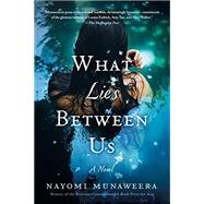 What Lies Between Us A Novel by Munaweera, Nayomi, 9781250118172