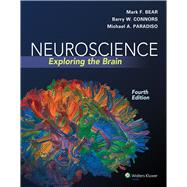 Neuroscience Exploring the Brain by Bear, Mark F.; Connors, Barry W.; Paradiso, Michael A., 9780781778176