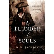 A Plunder of Souls by Jackson, D. B., 9780765338181