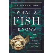 What a Fish Knows The Inner Lives of Our Underwater Cousins by Balcombe, Jonathan, 9780374288211