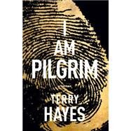 I Am Pilgrim by Hayes, Terry, 9781594138218