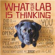 What Your Lab Is Thinking by Willow Creek Press, 9781682348222