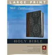 Holy Bible by Tyndale House Publishers, 9781414368290