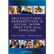 Multicultural Perspectives in Social Work Practice With Families by Congress, Elaine P., 9780826108296