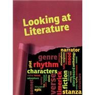 Looking at Literature: What Are Novels, Graphic Novels, Short Stories, and Poems? by Guillain, Charlotte, 9781410968319
