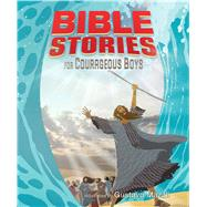Bible Stories for Courageous Boys (padded cover) by Unknown, 9781433648342