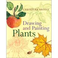 Drawing and Painting Plants by Brodie, Christina, 9780881928419