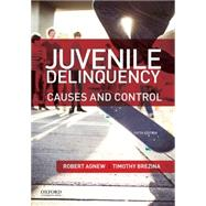 Juvenile Delinquency Causes and Control by Agnew, Robert; Brezina, Timothy, 9780199388462