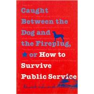 Caught Between the Dog and the Fireplug, Or, How to Survive Public Service by Ashworth, Kenneth H., 9780878408474