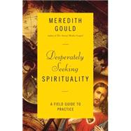 Desperately Seeking Spirituality by Gould, Meredith, 9780814648506